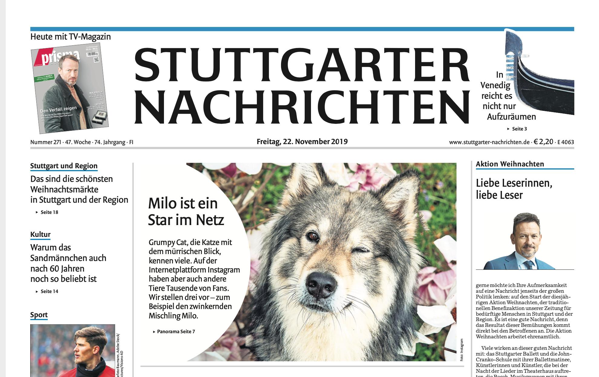 Titelseite der Stuttgarter Nachrichten Petfluencer Milo verwolft